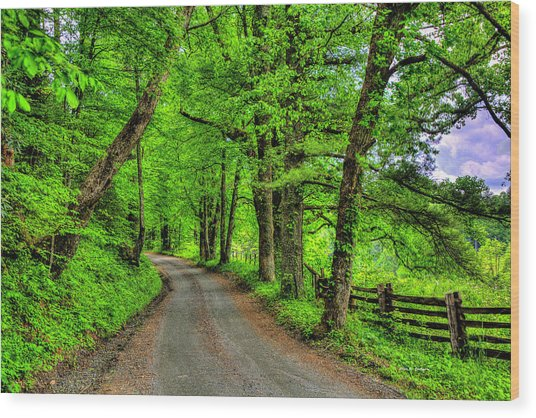 Country Roads Wood Print