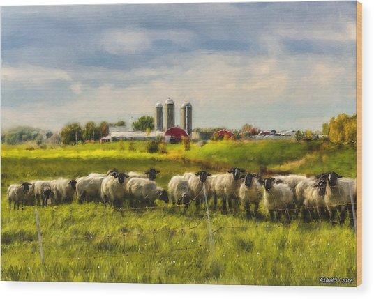 Country Sheep Wood Print