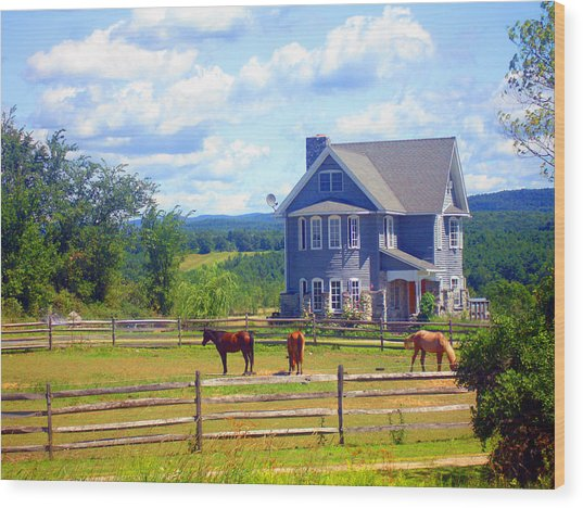 Country Splendor Wood Print by Ashley Porter