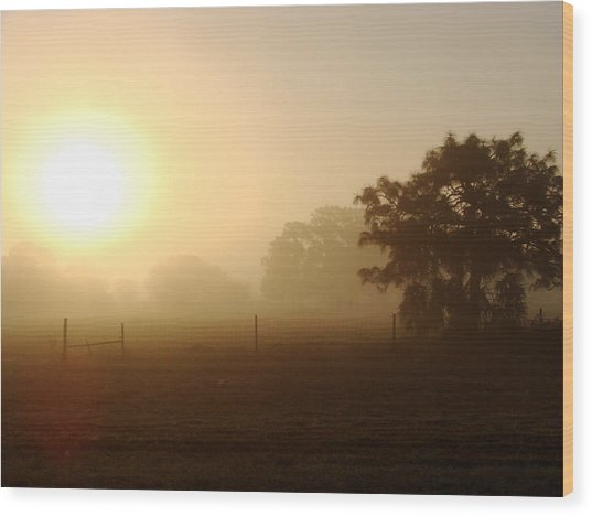 Country Sunrise Wood Print by Kimberly Camacho
