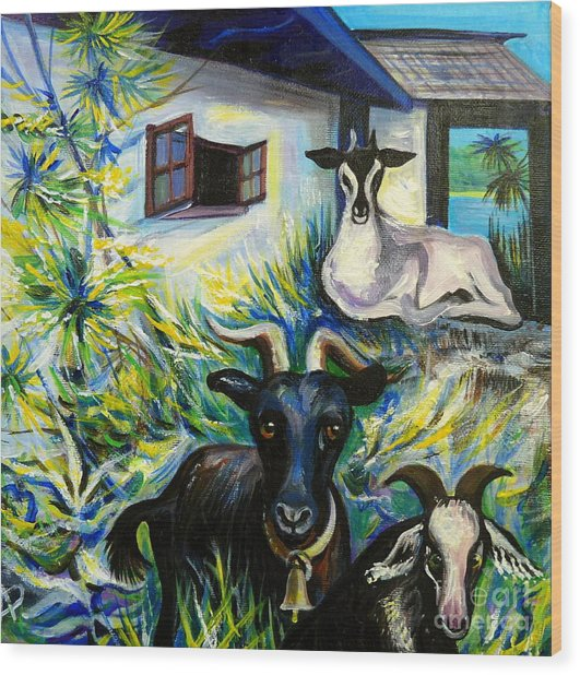 Countryside Of Jamaica Wood Print