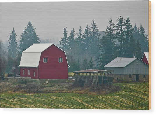 Countryside Red Barn Wood Print by Liz Santie