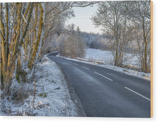 Countryside Road In Central Scotland Wood Print