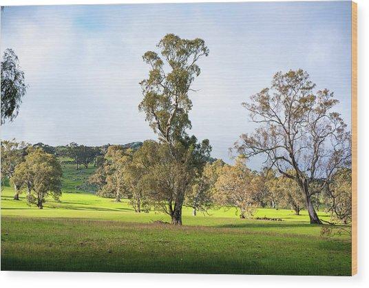 Countryside Victoria Australia Wood Print