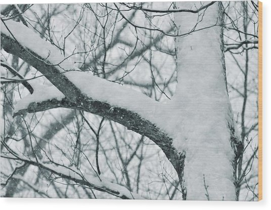 Covered In White Wood Print by JAMART Photography