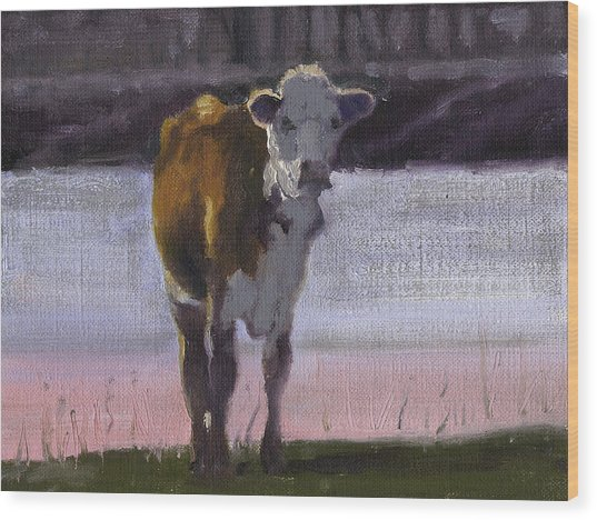Cow At The Pond Wood Print