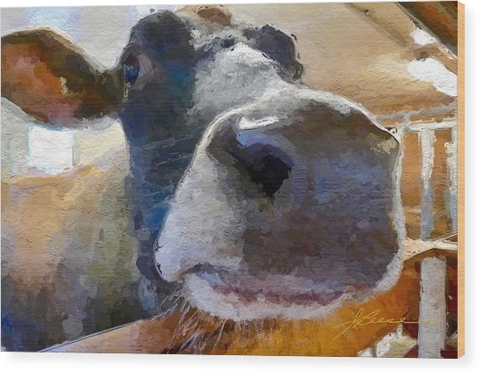 Cow Face Close Up Wood Print
