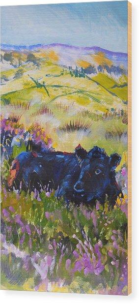 Cow Lying Down Among Plants Wood Print