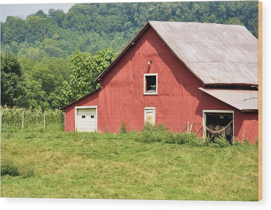 Cows In The Barn Wood Print by Jan Amiss Photography