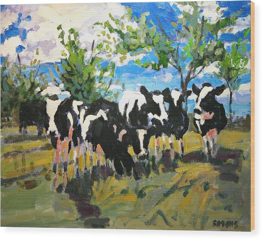 Cowscape Wood Print by Brian Simons