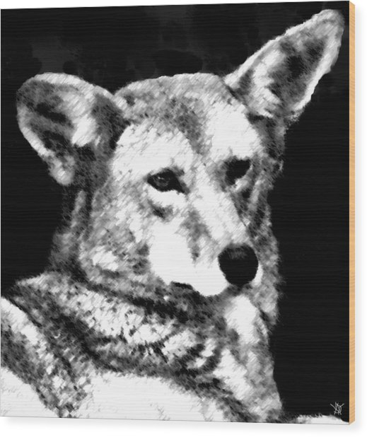 Coyote Charcoal Wood Print by Debra     Vatalaro