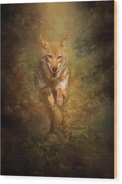 Coyote Energy Wood Print