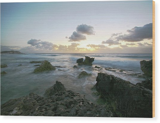Cozumel Sunrise Wood Print