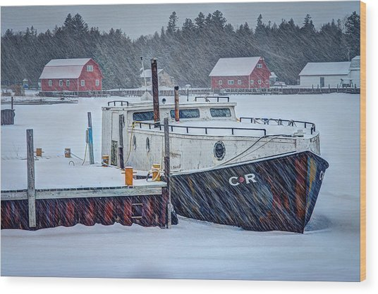 Cr Tug Wood Print