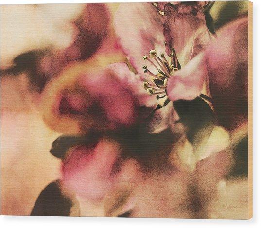 Crab Apple Blossoms IIi Wood Print