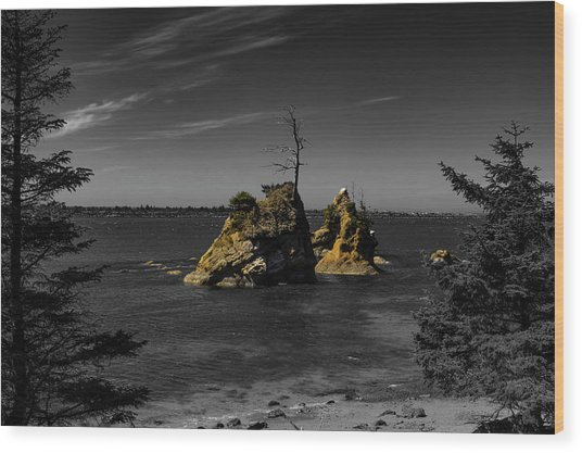 Crab Rock Wood Print