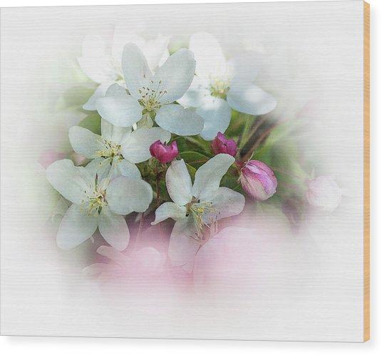 Crabapple Blossoms 3 - Wood Print