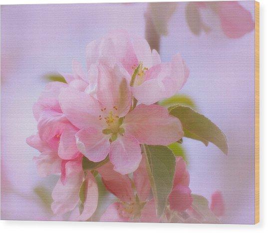 Crabapple Pink Wood Print