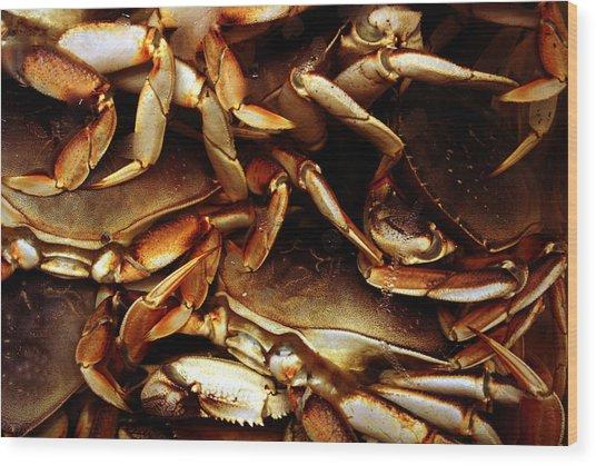 Crabs Awaiting Their Fate Wood Print