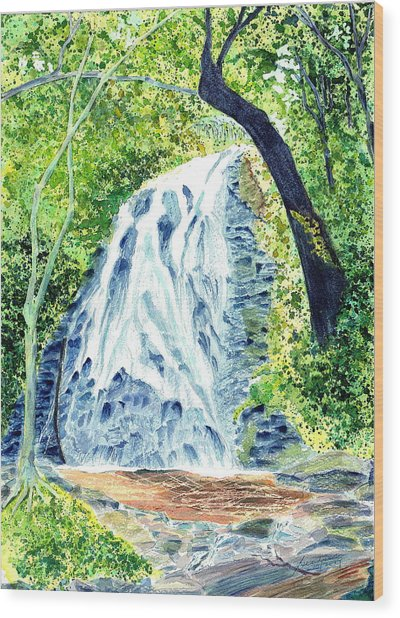Crabtree Falls - Phantom Of The Blue Ridge Wood Print by Joel Deutsch