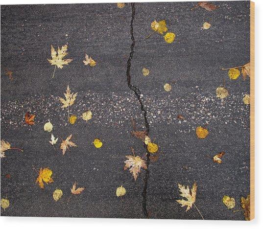 Crack 2 Wood Print by Lyle Crump