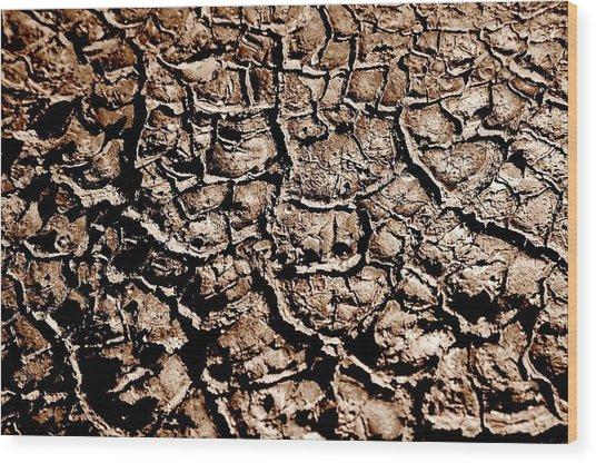 Cracked Earth Wood Print by Caroline Clark