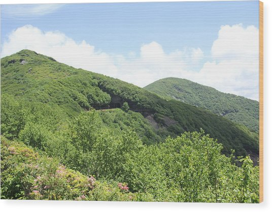 Craggy Gardens Wood Print
