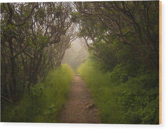 Craggy Pinnacle Trail Blue Ridge Parkway Wood Print