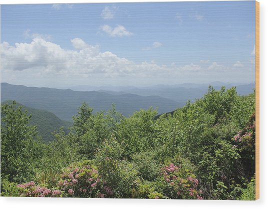 Craggy View Wood Print
