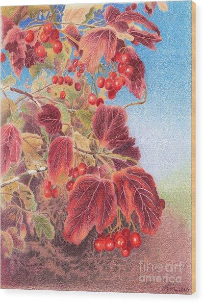 Cranberry Bush In Autumn Wood Print by Elizabeth Dobbs