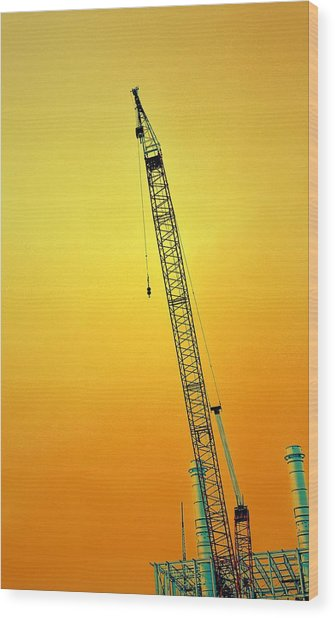Crane With Towers Wood Print