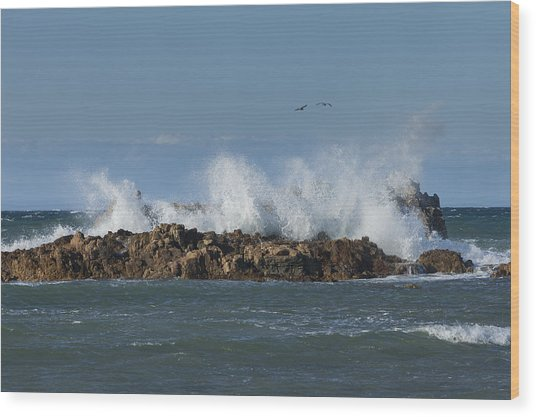 Crashing Waves And Gulls Wood Print
