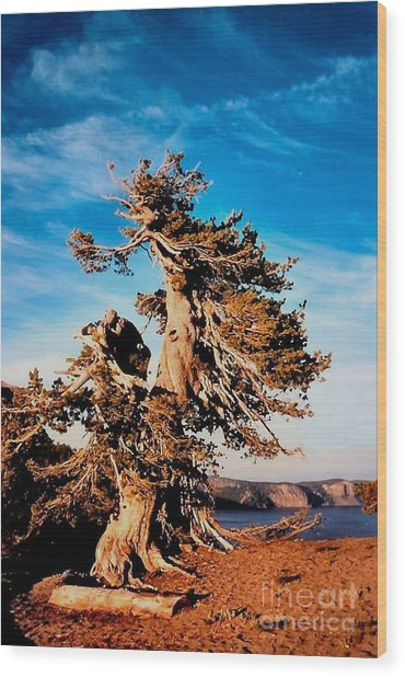 Crater Lake Winds Wood Print by Diane E Berry