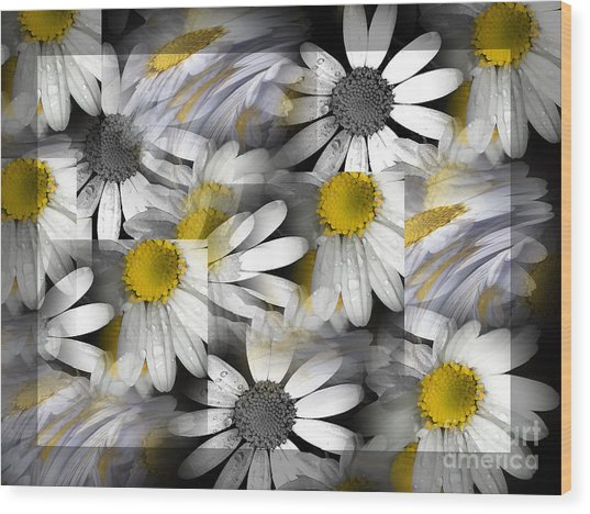 Crazy Daisys Wood Print