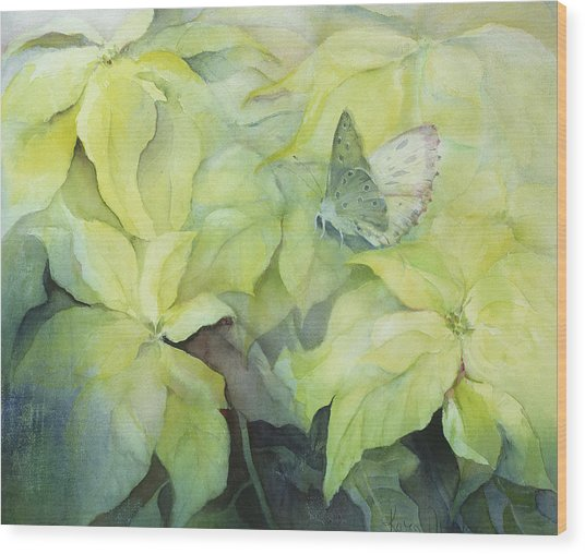 Cream Poinsettia With Butterfly Wood Print