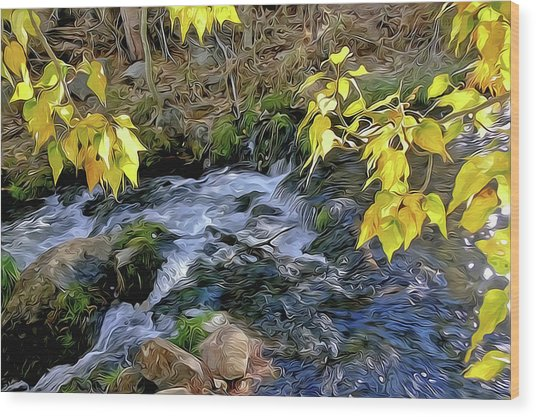 Creek And Aspen Leaves By Frank Lee Hawkins Wood Print