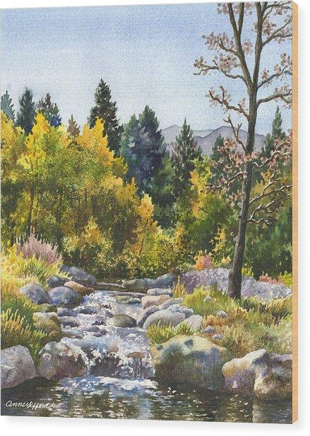 Creek At Caribou Wood Print