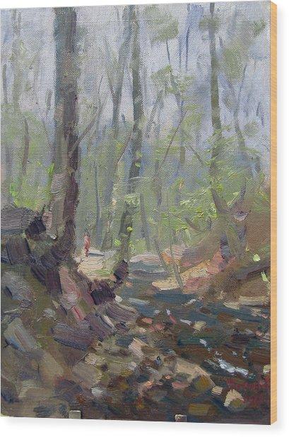 Creek At Lockport Natural Trail Wood Print