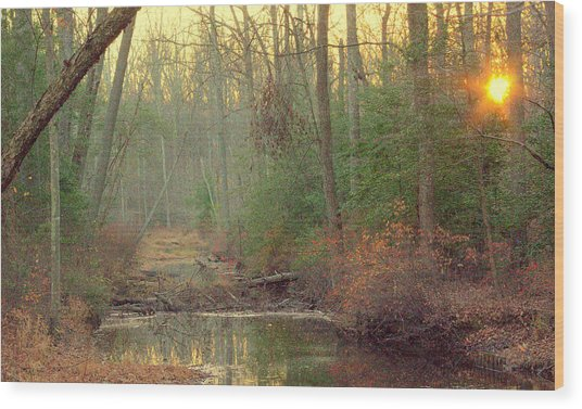 Creek Bed Wood Print