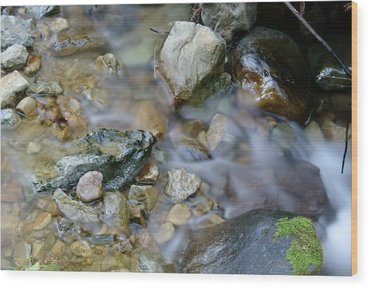 Creek On Mt Tamalpais Wood Print