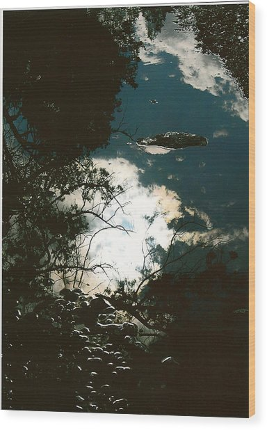 Creek Soul Wood Print by Thor Sigstedt
