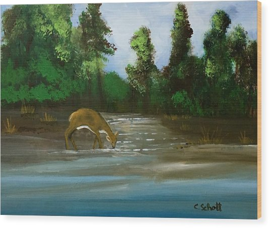 Creekside Drink Wood Print