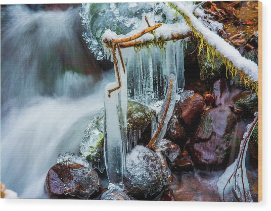 Creekside Icicles Wood Print