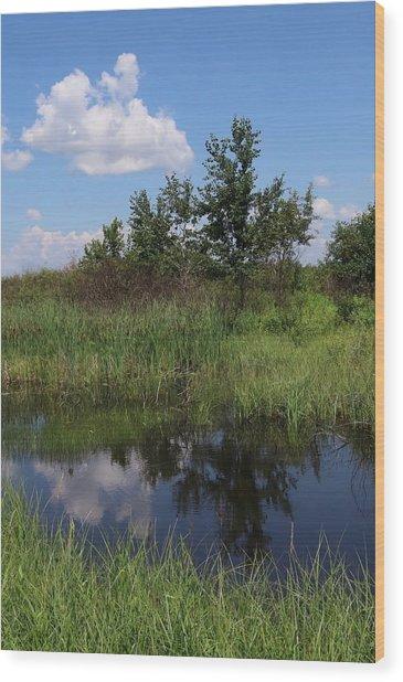 Crex Meadows Wood Print