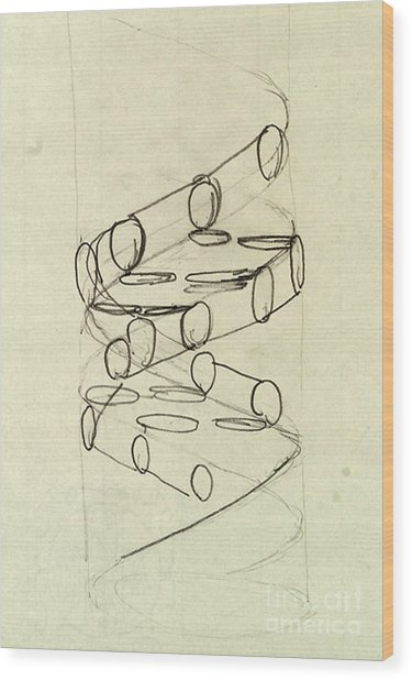 Cricks Original Dna Sketch Wood Print