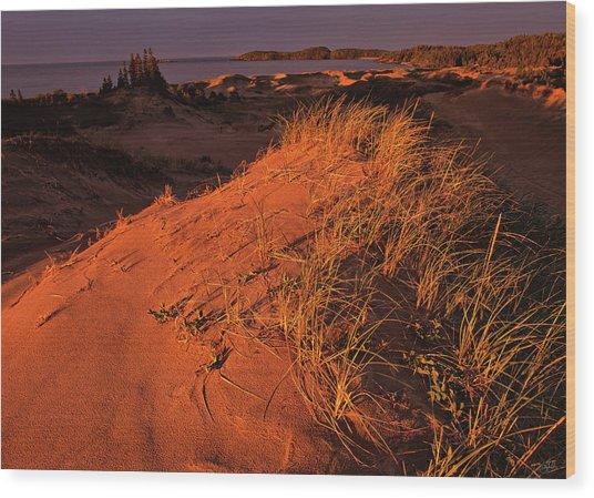 Crimson Dunes Wood Print
