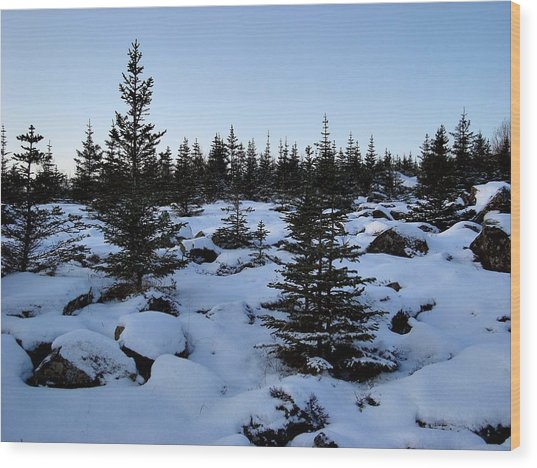 Crisp Clear Morning Wood Print by Marilynne Bull