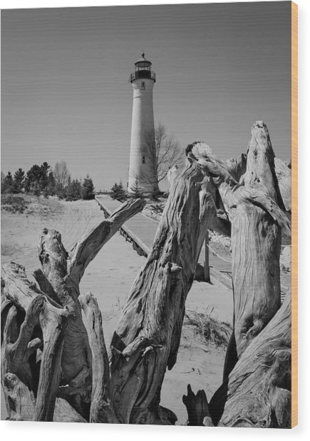 Crisp Point Lighthouse With Driftwood Wood Print