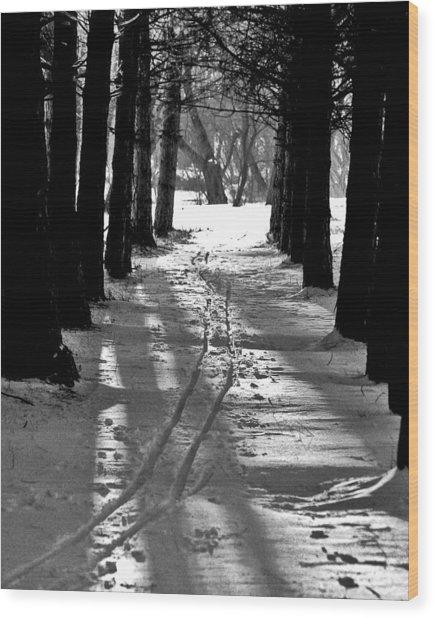 Cross Country Tracks Wood Print by Ralph Steinhauer