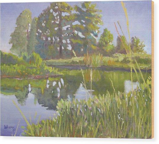 Cross Creek Wood Print by D T LaVercombe